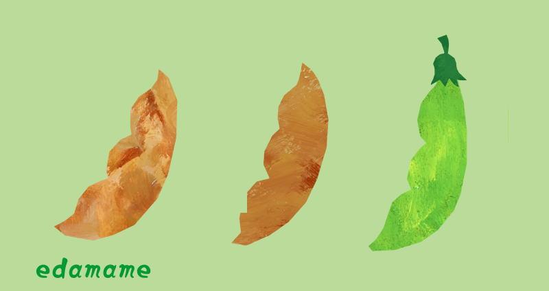 枝豆には色々な品種がある!