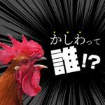 意外と知らない【雑学】かしわ肉と鶏肉は何が違うのか