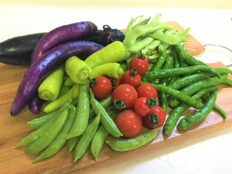 初夏の野菜にはビタミンやミネラルが豊富!
